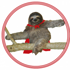 Action Sloth