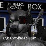 CyberWoLfman