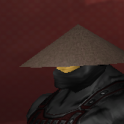 ninja surprise